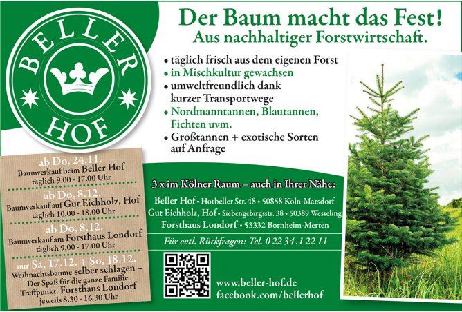 Weihnachtsbäume vom Beller Hof